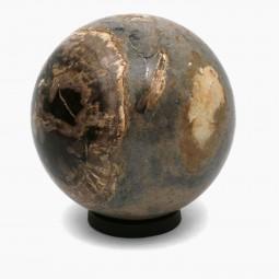 Petrified Wood Sphere On Iron Ring Base