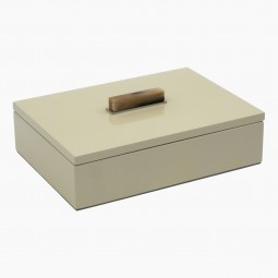 Champagne Lacquer Box with Horn and Brass Handle