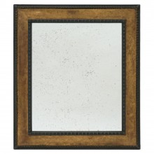 Gilt Wood and Ebonized Framed Mirror