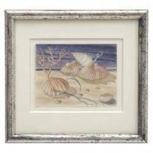 Crayon Still Life Drawing of Shells by Michel Debieve