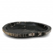 Petrified Wood Shallow Bowl