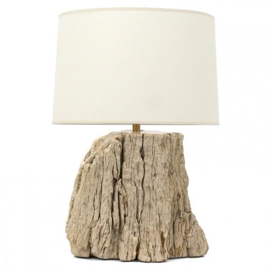 Petrified Wood Table Lamp