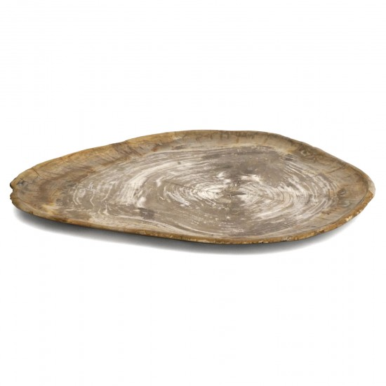 Beige Organic Petrified Wood Tray